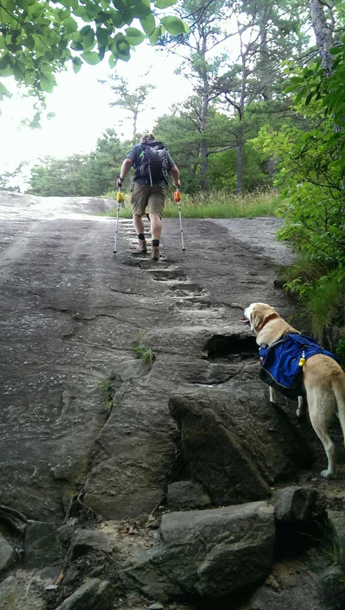 Table Rock Mountain: A Carolina Hiker's Rite Of Passage
