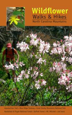 Wildflower Walks & Hikes: NC Mountains